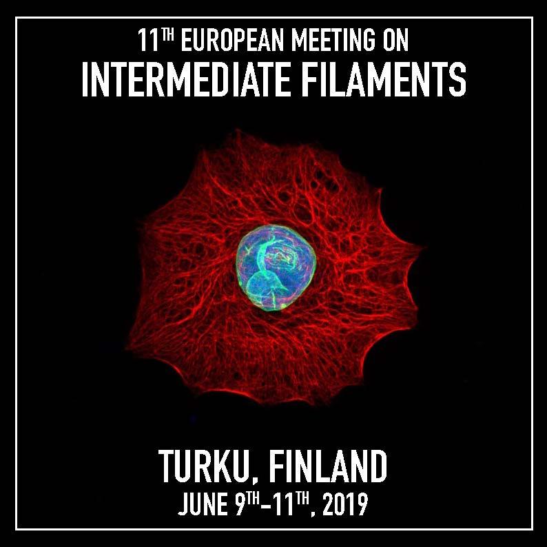 EUROIF 2019 in Turku